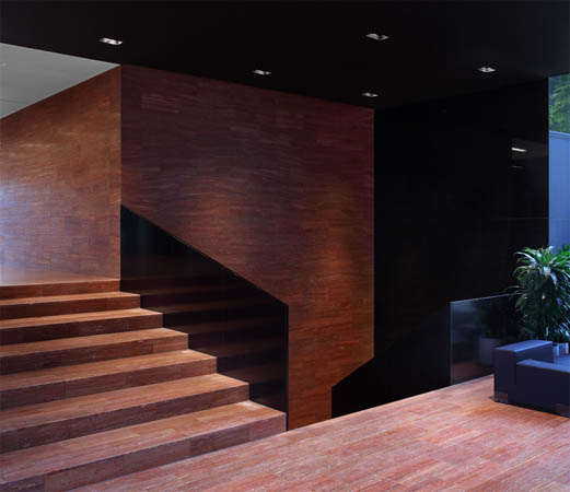 ALM by Crepain-Binst Architects
